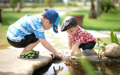 Social Emotional Development and Friendships